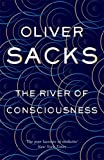 #8: The River of Consciousness