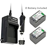 Kastar Battery (2-Pack) And Charger Kit For Sony NP-FP70, NP-FP71 Work With Sony DCR-30, DVD92, DVD103, DVD105, DVD202, DVD203, DVD205, DVD304, DVD305, DVD403, DVD404, DVD405, DVD505, DVD602, DVD605, DVD653, DVD703, DVD705, DVD755, DVD803, DVD805, DVD905,
