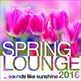 Spring Lounge 2016 (Continuous Mix)