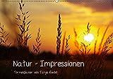 Natur - Impressionen Terminkalender von Tanja Riedel Schweizer KalendariumCH-Version (Wandkalender 2019 DIN A2 quer): Bilder zum Entspannen und ... 14 Seiten ) (CALVENDO Natur)