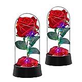 Rosa Incantata Beauty Red Rose Silk Rose in Glass Dome con Spina USB/Alimentato A Batteria Miglior Regalo per Il Suo Anniversario di Matrimonio Confezione da 2