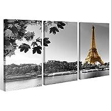 Lienzo en 3 piezas de ciudad París Torre Eiffel perfil de ciudad en blanco/negro - cuadro enmarcado - directo del fabricante - 120x80cm (3Stk 40x 80cm)