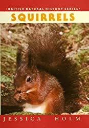 By Jessica Holm - Squirrels (British Natural History Series)