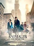 3-animales-fantasticos-y-donde-encontrarlos-bd-3d-2d-blu-ray