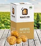 Brotbackmischung Bio Kartoffel in the Box, Kartoffel-Brot, 1er Box, Dinkel, weizenfrei, vegan, Brot Backmischung zum selber backen im Brotbackautomat oder Backofen (1 x 635 g für 1,1 kg Brotteig)