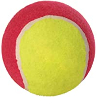 Trixie 12 Tennis Ball Toy for Pet Dogs/Cats, Set of 12 pcs,ø 10 cm
