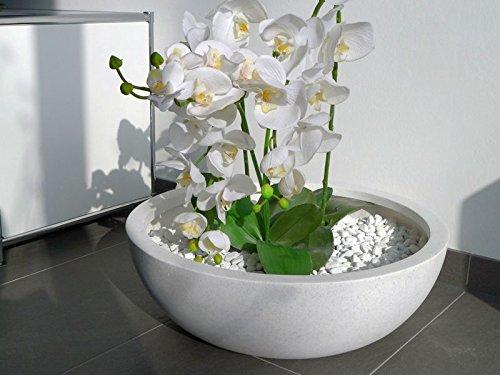 Pflanzschale HYDRO aus Fiberglas in schwarz-anthrazit, Blumenschale, Pflanzgefäße, Dekoschale, Pflanzkübel (Ø46 x H16 cm, perlweiß)
