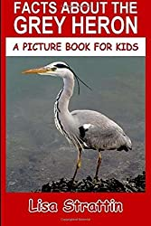 Facts About The Grey Heron: Volume 72 (A Picture Book For Kids) by Lisa Strattin (2016-06-21)