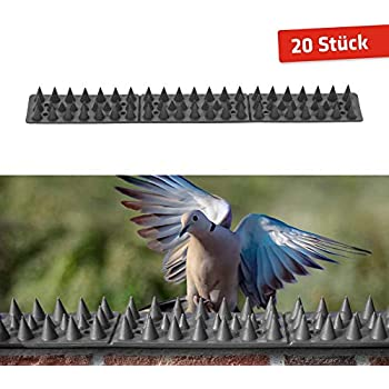 Taubenspikes Edelstahl Vogelschutz Dauerhaft Im Einsatz Priostahl Taubenabwehr