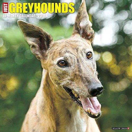 just-greyhounds-2017-calendar
