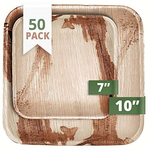 CaterEco 712166788639 Quadratische Palmblatt Essteller Set (50-er Pack)