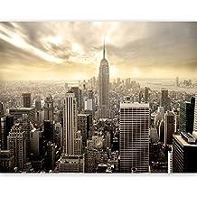 murando Carta da parati 450x270 cm Fotomurali in TNT Murale alla moda Decorazione da Muro XXL Poster Gigante Design Carta per pareti New York 100604-14