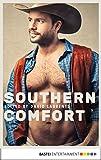 Southern Comfort (Gay Erotica Classics Book 1)