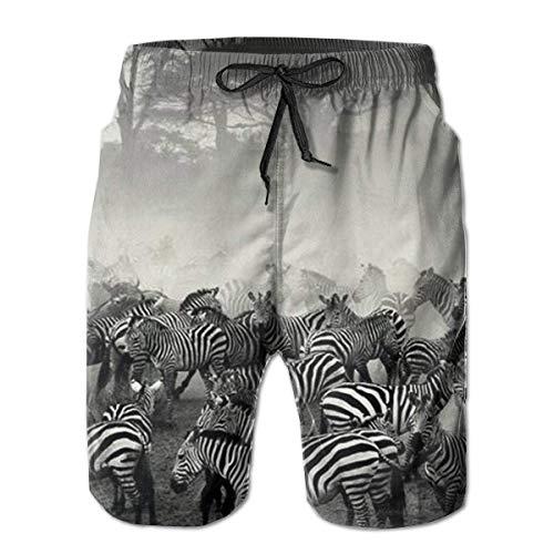 DLing Badehose für Herren African Zebra Group Quick Dry Beach Board Shorts,XL - Zebra-print-kordelzug