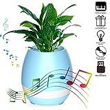 #3: Lambent Flower Pot Bluetooth Speaker- Blue