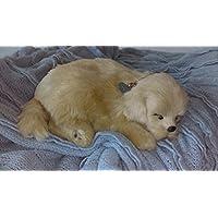 Breathable Golden Puppy Companion Pet für Menschen mit Gedächtnisverlust vom Altern und Pflegepersonal preisvergleich bei billige-tabletten.eu
