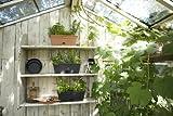 elho green basics balkonkasten allin1 50cm Übertopf - lebhaft schwarz - 9