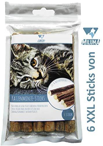 Miluma 6 x Katzenminze Sticks für Katzen | natürliche Zahnpflege| 6 extra Dicke und hochwertige...