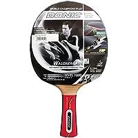 Schildkrot Skidskrot - Pala de ping pong, tamaño 26 cm, color gold/gris