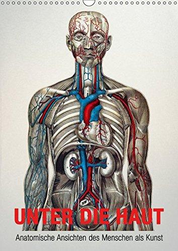 Unter die Haut (Wandkalender 2019 DIN A3 hoch): Anatomische Ansichten des Menschen als Kunst (Monatskalender, 14 Seiten ) (CALVENDO Gesundheit) - Kalender Anatomie
