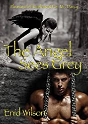 The Angel Sees Grey: Pleasure and Punishment for Mr. Darcy