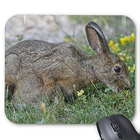 Lovely Rabbit Mousepad Series Hungry Bunny Mouse Pad Bunny Rabbit Mouse Pad Rectangle Mousepads