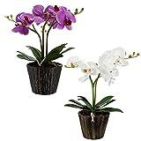 2er Set LED Orchidee Blumen Topf Tisch Leuchten weiß Blüten Blätter Kunst Pflanzen