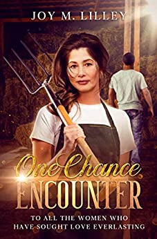 Book cover image for One Chance Encounter