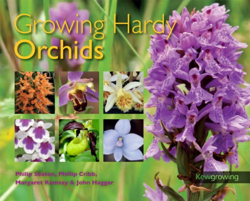 Growing Hardy Orchids (Kew Growing) - Hardy Orchid