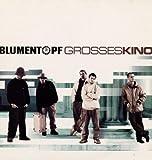 Grosses Kino [Vinyl LP]