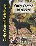 Curly Coated Retriever (Petlove)