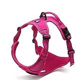 Best Front Range No-pull Dog Harnesses - SGODA Dog Harness, Front Range No Pull Harness Review