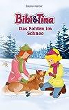 Bibi & Tina - Das Fohlen im Schnee: Roman