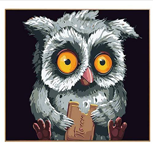 DIY Bilder nach Zahlen Design Canvas Digital Zeichnung Färbung auf Leinwand Öle Malen nach Zahlen Cookie Owl Wall Arts Frameless 16x20 inch (Cookies Auf Art)