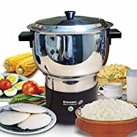 ELECTRIC MULTI STEAM COOKER - Stainless Steel - 2 Litre (220V, 600 Watt)