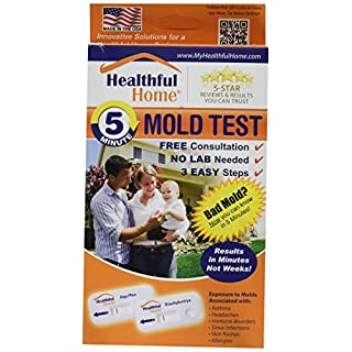 Healthful Home® 5-Minute Home Mold Test (Aspergillus, Penicillium, Stachybotrys)