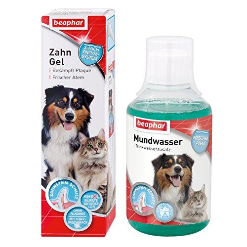 kleine PHARM Beaphar Zahn-Pflege 2er Set für Hunde & Katzen I Mundwasser gegen Mundgeruch als Trinkwasserzusatz I Zahngel gegen Zahnbelag zum einfachen Auftragen auf die Zähne ohne Zahnbürste I