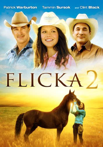 Flicka 2 Cover