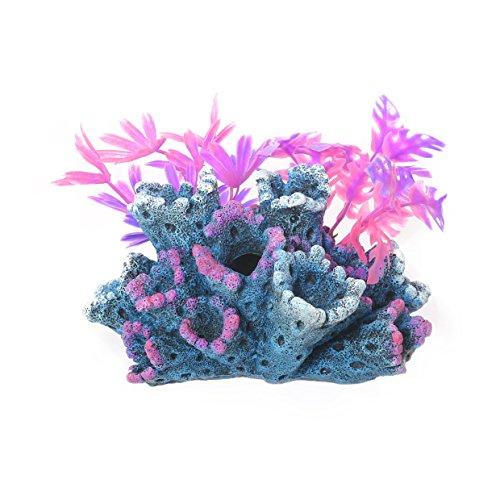 Rosewood Fantasy - Figura Decorativa Acuario pecera
