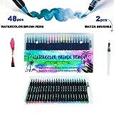 HETHRONE Lot de 48+2 stylos pinceaux - Fournitures artistiques - Pour livres de coloriage, à faire soi-même - Esquisses, carnet, calligraphie, peinture - Pinceau à eau avec pointe feutre inclus