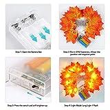 Festive Lights Marokkanische Kugel batteriebetriebene Lichterkette, weißes Metall, LEDs warmweiß - 2