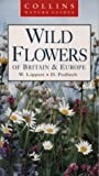Cover of: Wild Flowers of Britain and Northern Europe (Collins Nature Guide) | Delter Podleich