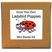 Grow Your Own Ladybird Poppies Plant Kit - Unusual, Unique and Quirky Complete Beginner Friendly Indoor Gardening Gift for Men, Women or Children