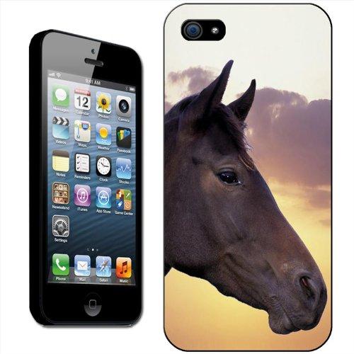 Fancy a snuggle Coque arrière rigide clipsable pour Apple iPhone Motif tête de cheval, plastique, Black Horse Side View, iPhone 5/5s