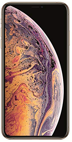 Apple iPhone Xs Max (Gold, 4GB RAM, 512GB Storage, 12 MP Dual Camera, 458 PPI Display)