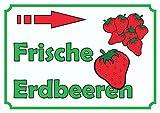 Verkaufsschild Erdbeeren rechts A1 Rückseite selbstklebend