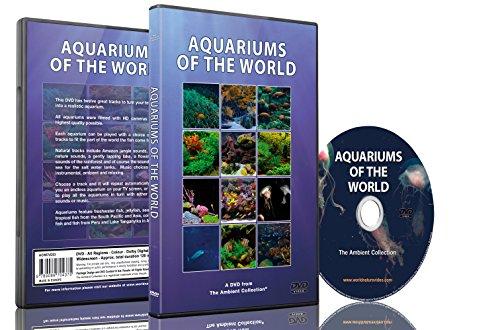 Aquarium Hd (Aquarium DVD-Aquarien aus der ganzen Welt mit 12 Aquarien in HD)