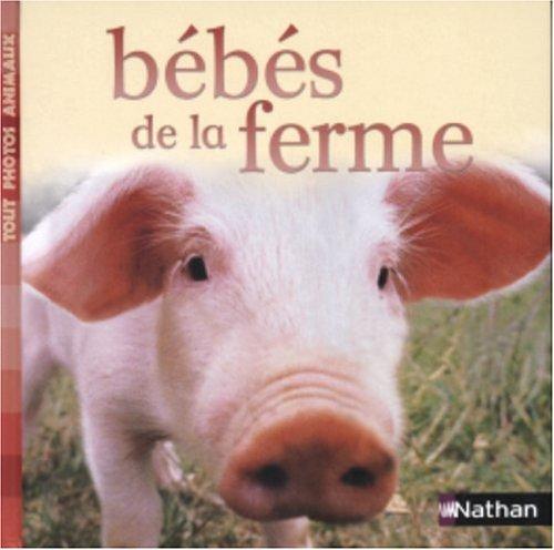 Bébés de la ferme par Nathan