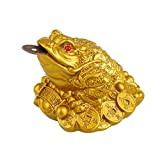 Gold Feng Shui Money Lucky Fortune - Monedero de Rana China Oriental