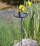 AmaCasa Vogeltränke Vogelbad Vogelbecken Wassertränke Tränke Wasserschale Stecker Braun Gusseisen